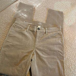 ANN TAYLOR LOFT Tan Modern Skinny Velvety Jeans